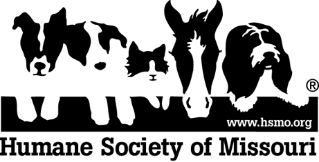 St  Louis Pet Adoption: Humane Society of Missouri