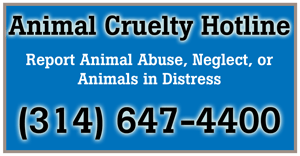 report animal abuse at 314-647-4400