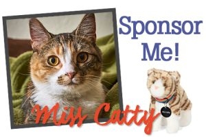 Sponsor Fur-Ever Friend Miss Catty