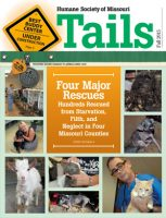 Tails Magazine Cover fall 2015