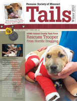 Tails Magazine Cover winter 2013 Trooper