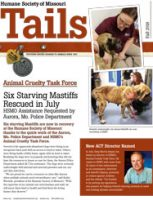 Tails-Fall-2018